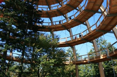 Ein Kurzurlaub Im Nationalpark Bayerischer Wald Verspricht Natur Pur